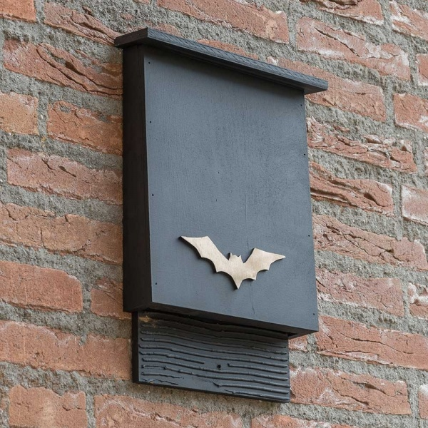 Build A Bat Box What S Hening In